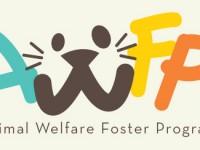 Animal Welfare Foster Program